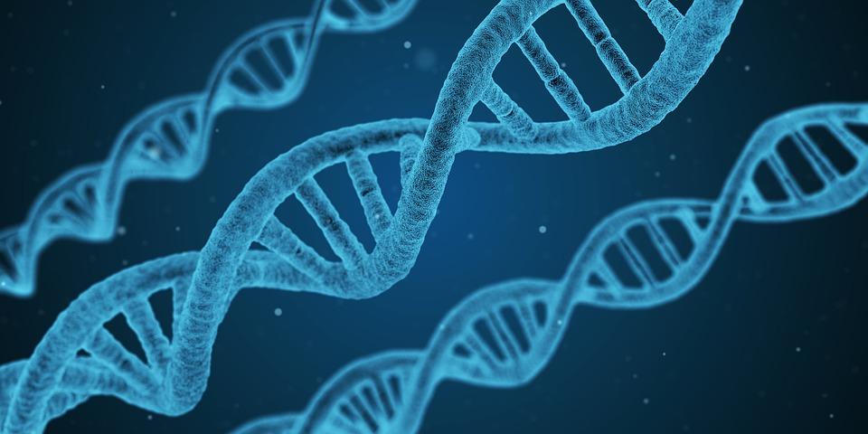 Urine biomarkers may detect disease state in NMIBC